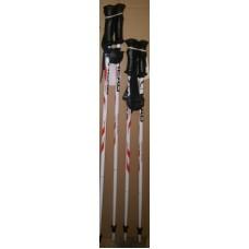 Kid ski poles  Head Supershape